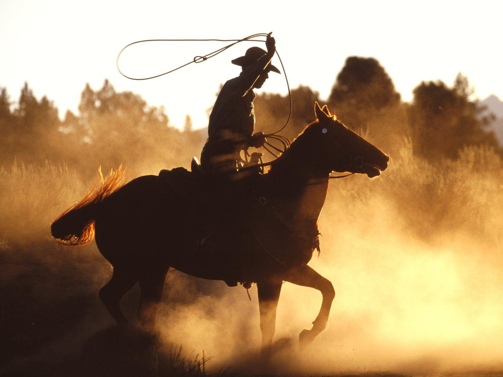 Los vaqueros del siglo XXI ya no llevan caballos