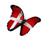 denmark butterfly 2